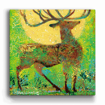 Summer Elk Box Art
