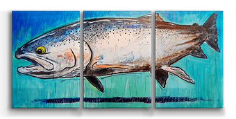 Steelhead Box Art