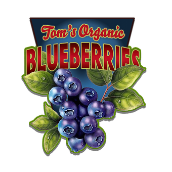 Blueberries (Shaped Sign)