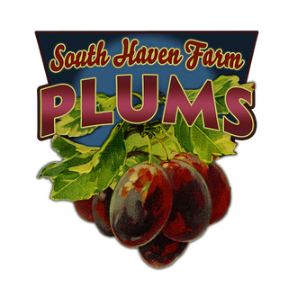 Plums (Shaped Signs)