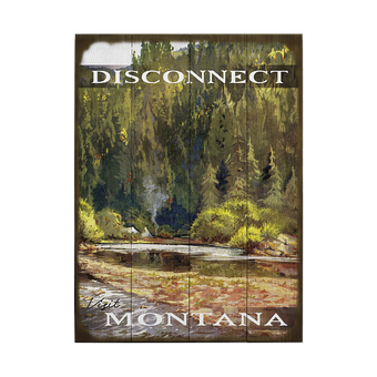 Disconnect and Visit Nature