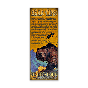 (Grizzly) Bear Tips